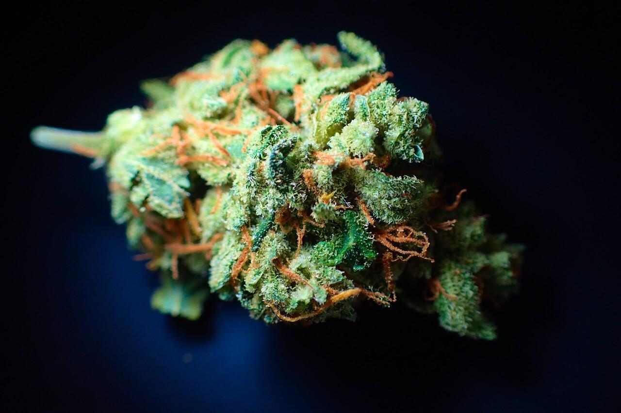 cannabinoid addiction